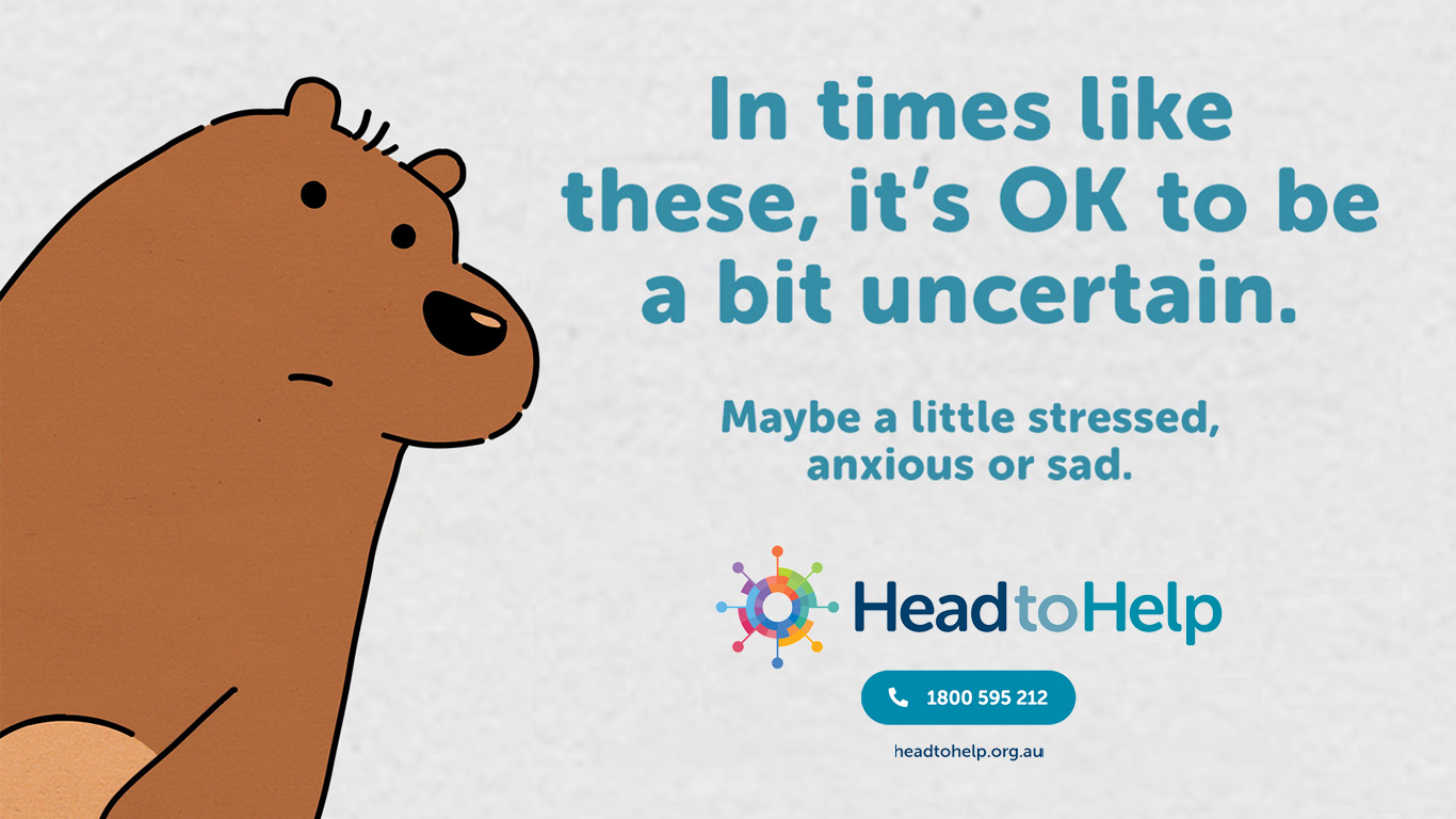 HeadtoHelp promotional image showing an uncertain bear and the contact details for HeadtoHelp, which are available on this page.